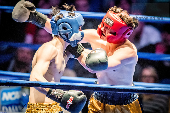"""March 3, 2017; Cam """"Crash Cadillac"""" Nolan (gold trunks) and Dan """"Thunder Road"""" Andree (blue trunks) fight in the 185lb. division. Andree won by split decision. (Photo by Matt Cashore/University of Notre Dame)"""