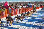 Nathan Schroeder starting Iditarod 2014, Willow, Southcentral Alaska, Winter.
