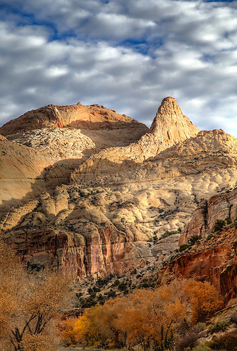 Fall has arrived at Capital Reef National Park, Utah