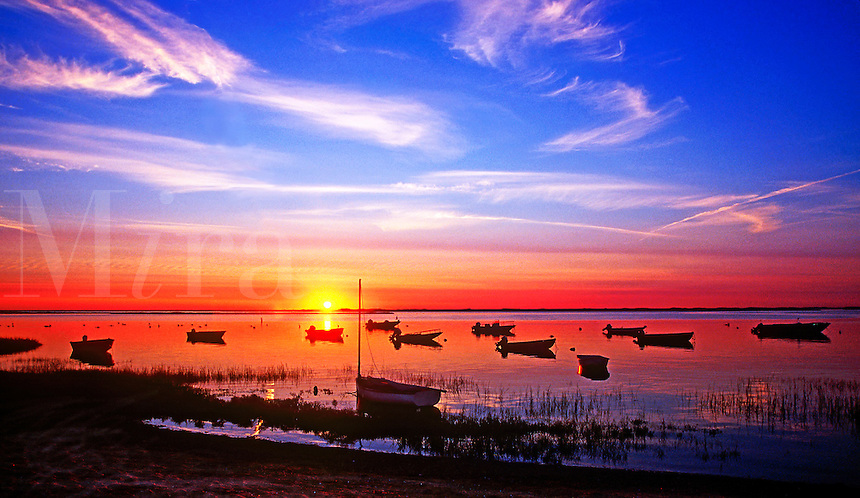 Scenic sunset seascape of small boats in silhouette moored in Nauset Harbor with the sun setting over the horizon and a wide blue sky in contrast above. Cape Cod, New England.