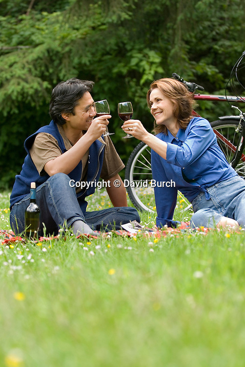 Couple having picnic, making toast with wine