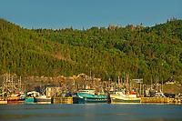 Fishing village in La Scie Harbour off the Atlantic Ocean. Baie Verte Peninsula.<br />La Scie<br />Newfoundland & Labrador<br />Canada