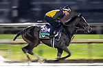 November 1, 2018: Glorious Empire (IRE), trained by James Lawrence II, exercises in preparation for the Breeders' Cup Turf at Churchill Downs on November 1, 2018 in Louisville, Kentucky. Alex Evers/Eclipse Sportswire/CSM