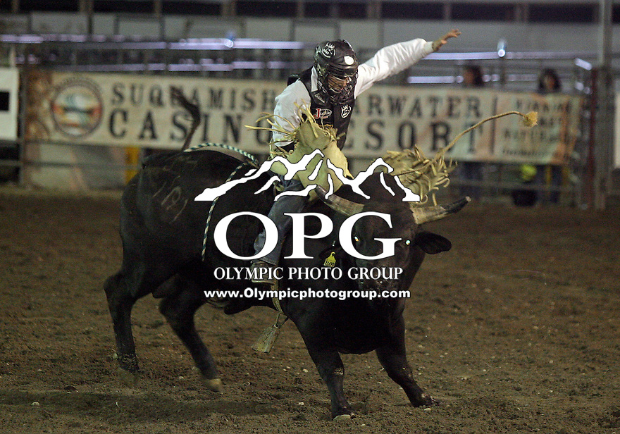 27 Aug 2010:  Dustin Elliott riding the bull Bad Jackie scored a time of 76 in the Bull Riding competition at the Kitsap County Stampede Wrangle Million Dollar PRCA Silver Rodeo Tour Bremerton, Washington.