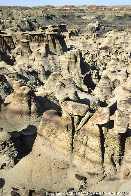 Hoo doo formations at the Bisti Wilderness Area near Farmington, NM