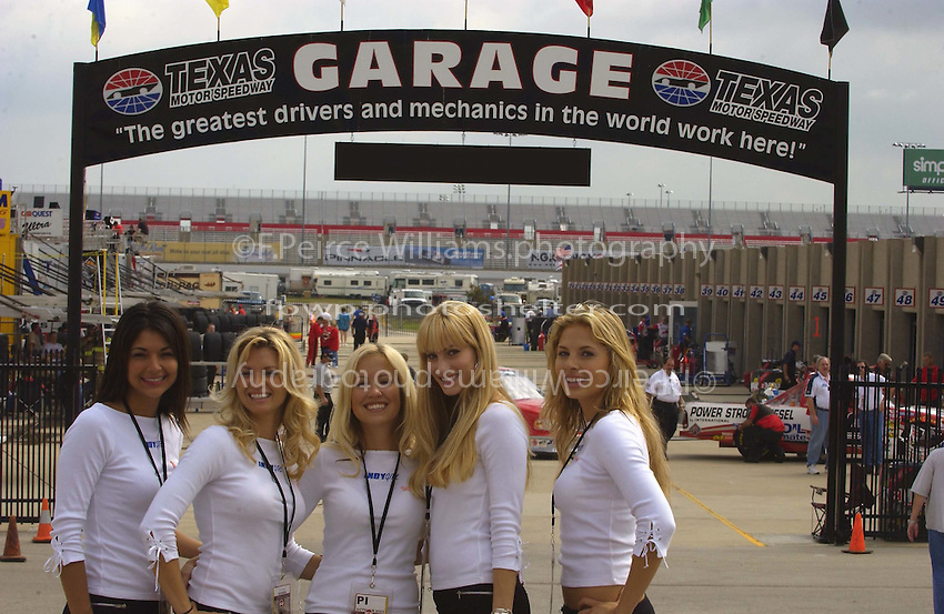 """.The """"Idny Girls"""" grace the garage area...."""