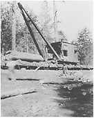 Original caption: H&amp;H timber sale near Vallecitos.  Scenes of stiff boom loaders used to load R.R. cars. Shows partial cutting in yellow pine stands.<br /> Hallack &amp; Howard Lumber Co.  Carson National Forest, NM