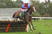 Xenophon ridden by Joe Cornwall in jumping action during the Pudding Norton Conditional Jockeys Selling Handicap Hurdle