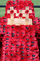 Opening of the Westminster Abbey Field of Remembrance at Westminster Abbey, London on November 7th 2019<br /> <br /> Photo by Keith Mayhew