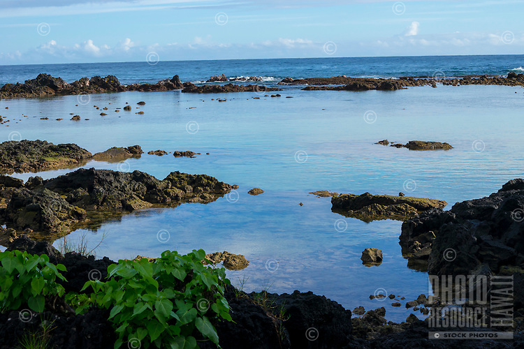 Carlsmith Beach Park with reflections in the shallow reef area showing the blue sky, Hilo, Big Island.
