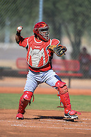 Cincinnati Reds catcher Jose Ortiz (59) during an instructional league game against the Cleveland Indians on September 28, 2013 at Goodyear Training Complex in Goodyear, Arizona.  (Mike Janes/Four Seam Images)