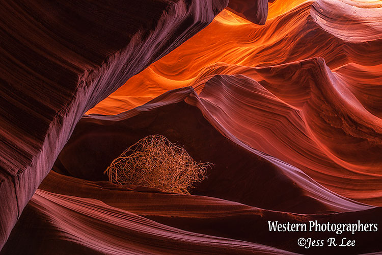 A photo of inside lower antelope canyon.