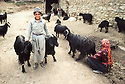 Iran 1981.Young boy with goats in a village near Khidawe