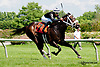 Bluegrass Chat winning at Delaware Park racetrack on 6/4/14