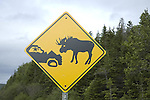 Moose hazard highway sign, Newfoundland