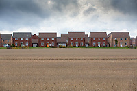 New property development encroaching into farm land<br /> &copy;Tim Scrivener Photographer 07850 303986<br />      ....Covering Agriculture In The UK....
