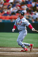 SAN FRANCISCO, CA - Mark McGwire of the St. Louis Cardinals in action during a game against the San Francisco Giants at Candlestick Park in San Francisco, California in 1998. Photo by Brad Mangin