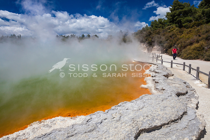 The Champagne Pools steaming at Waiotapu, Rotorua, Bay of Plenty, New Zealand - stock photo, canvas, fine art print