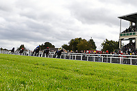 Winner of The PKF Francis Clark EBF Novice Stakes        Ace Ventura ridden by Anrea Atzeni and trained by Roger Varian during Afternoon Racing at Salisbury Racecourse on 4th October 2017