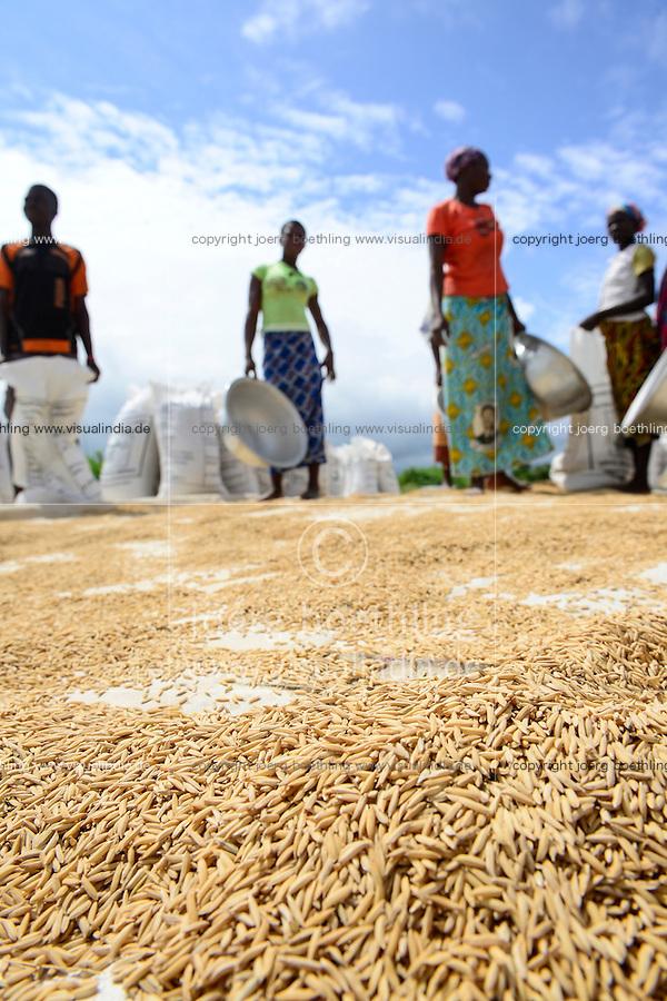 BURKINA FASO, Gaoua, rice hybrid seed production for Nafaso, women dry rice / GIZ Projekt ProCIV Grüne Innovationszentren, WSK Reis, Saatgut Herstellung, Trocknung und Verpackung von Reis Hybrid Saatgut bei Saatgutproduzent Nahondomo Patenfo, Lieferung an Nafaso