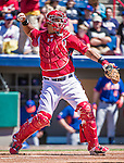 13 March 2014: Washington Nationals catcher Wilson Ramos in action during a Spring Training game against the New York Mets at Space Coast Stadium in Viera, Florida. The Mets defeated the Nationals 7-5 in Grapefruit League play. Mandatory Credit: Ed Wolfstein Photo *** RAW (NEF) Image File Available ***