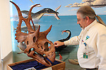 BLM Visitor Center on Hwy 89 near Big Water, Utah,<br />