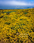 Garrapata State Park, Big Sur, Monterey County, California