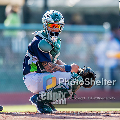 16 July 2017: Vermont Lake Monsters catcher Iolana Akau glances back to the dugout for a sign during a game against the Auburn Doubledays at Centennial Field in Burlington, Vermont. The Monsters defeated the Doubledays 6-3 in NY Penn League action. Mandatory Credit: Ed Wolfstein Photo *** RAW (NEF) Image File Available ***