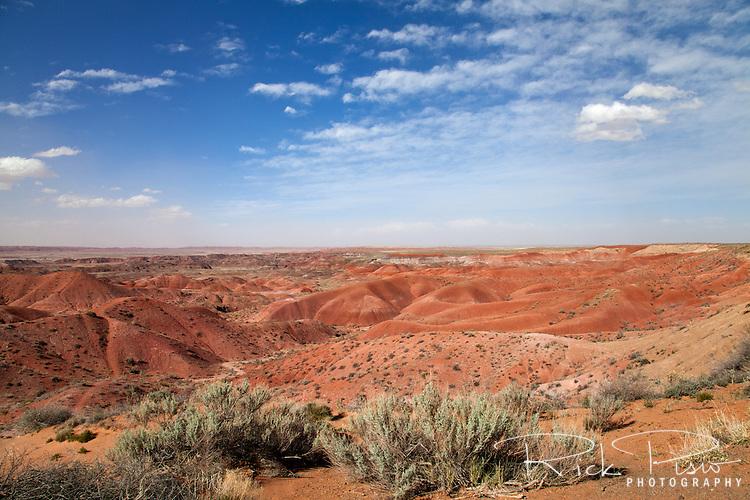 Painted Desert National Park in Arizona.