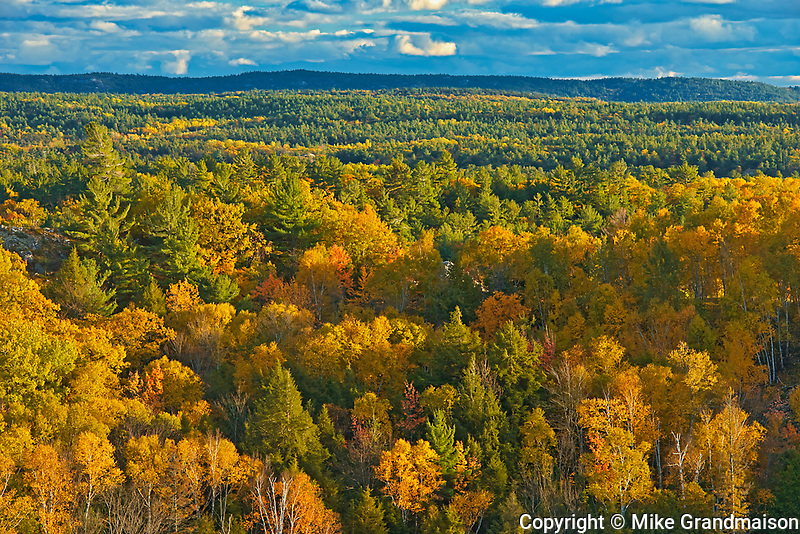 Autumn colors in Neebing County<br />