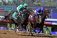 DEL MAR, CA - NOVEMBER 04: Bar of Gold #5, ridden by Irad Ortiz Jr. pulls ahead to win the Breeders' Cup Filly & Mare Sprint race on Day 2 of the 2017 Breeders' Cup World Championships at Del Mar Thoroughbred Club on November 4, 2017 in Del Mar, California. (Photo by Bob Mayberger/Eclipse Sportswire/Breeders Cup)