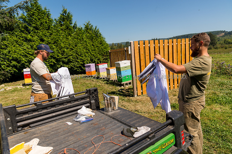 8/12/2016-- Mount Vernon, WA, USA<br /> <br /> Staff from the Schultz Family Foundation visit the Growing Veterans farm in Mt. Vernon, Washington, about an hour north of Seattle.<br /> <br /> <br /> Here, veterans Joel Swenson (left) and Collin Mcinnes, 27 work on the farm's bee hives.<br /> <br /> From http://growingveterans.org:<br /> <br /> &ldquo;Since 2012, Growing Veterans has been combining veteran reintegration with sustainable agriculture. Our unique model addresses the growing desire for alternative therapies for Post-Traumatic Stress (PTS) and Traumatic Brain Injury (TBI), as well as suicide prevention through peer-support and Applied Suicide Intervention Skills Training (ASIST) certification. We encourage continued service through volunteerism, and collective impact through collaboration with other local, regional, and national stakeholders.&nbsp; We provide opportunities for vets in transition to develop their resumes and identify how to translate skills learned in the military to new roles in the civilian sector. Further, our vets serve as leaders in the important movement toward sustainable agriculture&rdquo;<br /> <br /> Photograph by Stuart Isett. &copy;2016 Stuart Isett. All rights reserved.
