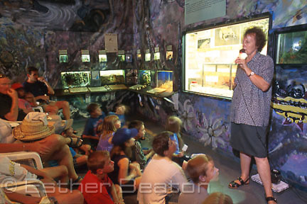 Woman speaking about funnelwebs prior to milking demonstration at Spider World, Australian Reptile Park. Gosford, New South Wales.