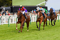 Winner of The Kevin Hall & Pat Boakes Memorial Handicap Land of Oz ridden by Ryan Tate and trained by Sir Mark Prescott   during Horse Racing at Salisbury Racecourse on 15th August 2019