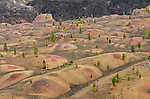 The Painted Dunes, Lassen Volcanic National Park, California