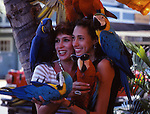 women and macaws in Lahaina