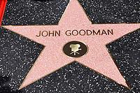 LOS ANGELES - MAR 10:  John Goodman star at the John Goodman Walk of Fame Star Ceremony on the Hollywood Walk of Fame on March 10, 2017 in Los Angeles, CA