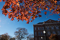 Fall maple leaves with Montgomery Hall<br />  (photo by Megan Bean / &copy; Mississippi State University)