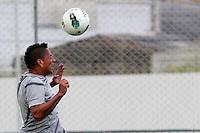 SÃO PAULO,SP,04 JUNHO 2012 - TREINO CORINTHIANS<br /> Ralf durante treino do Corinthians no CT Joquim Grava, zona leste de Sao Paulo, na tarde desta segunda-feira 04. O time se prepara para o jogo contra o Figueirense, no estadio Paulo Machado de Carvalho (Pacaembu ) pela 3º rodada do Campeonato Brasileiro 2012. FOTO ALE VIANNA - BRAZIL FOTO PRESS