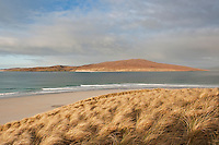Dune grass, Luskentyre beach, Isle of Harris, Western Isles, Scotland
