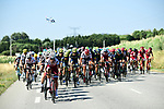 The peloton in action during Stage 16 of the 104th edition of the Tour de France 2017, running 165km from Le Puy-en-Velay to Romans-sur-Isere, France. 18th July 2017.<br /> Picture: ASO/Alex Broadway | Cyclefile<br /> <br /> <br /> All photos usage must carry mandatory copyright credit (&copy; Cyclefile | ASO/Alex Broadway)