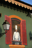 "Europe/France/Rhone-Alpes/69/Rhone/env de Lyon/Collonges -au-Mont-d'Or : Restaurant ""Paul Bocuse"" détail de la décoration mur peint du restaurant Paul Bocuse à la fenètre [Non destiné à un usage publicitaire - Not intended for an advertising use]"