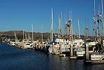 Fishing fleet at Bodega Bay