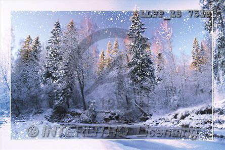 Maira, CHRISTMAS LANDSCAPE, photos(LLPPZS7519,#XL#) Landschaften, Weihnachten, paisajes, Navidad