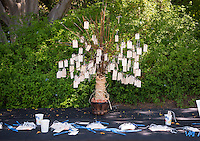 Occidental College's class of 2020 meets with President Jonathan Veitch in the Mitchell Garden as part of Matriculation during Orientation, Aug. 29, 2016. They also had the opportunity to write a wish and tie it to the wishing tree.<br /> (Photo by Marc Campos, Occidental College Photographer)