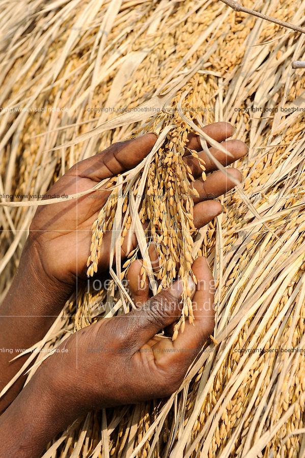 INDIA West Bengal, rice for community rice bank in village Kustora / INDIEN Westbengalen , Dorf Kustora , Dorfbewohner betreiben gemeinsam eine Reisbank zur Ueberbrueckung von Ernteausfaellen und bei Nahrungsverknappung , gefoerdert durch LWS Indien