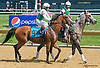 Holiday Star at Delaware Park on 7/11/15