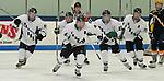 FHC Hockey vs. Manistee