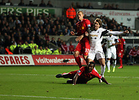 Pictured: Michu of Swansea (R), against Martin Skrtel (L) and Kolo Toure (FRONT) both of Liverpool, scoring his equaliser, making the score 2-2. Monday 16 September 2013<br />