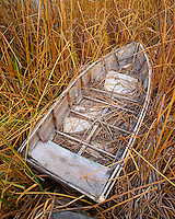 USA, Oregon, Abandoned boat in reed grass along Upper Klamath Lake. Credit as: Steve Terrill / Jaynes Gallery / DanitaDelimont.com
